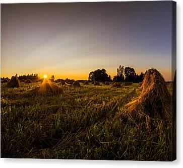 Canvas Print featuring the photograph Amish Harvest by Chris Bordeleau