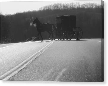 Amish Horse And Buggy In Winter Canvas Print by Dan Sproul