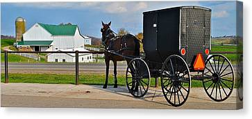 Amish Horse Buggy And Farm Canvas Print by Frozen in Time Fine Art Photography