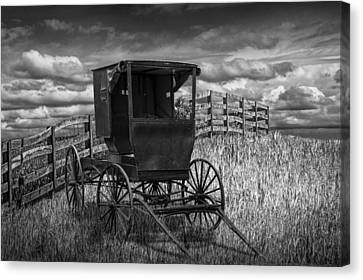 Amish Horse Buggy In Black And White Canvas Print