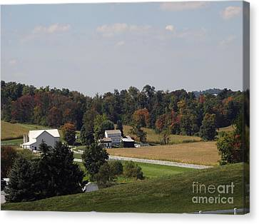 Amish Canvas Print - Amish Living by Gena Weiser