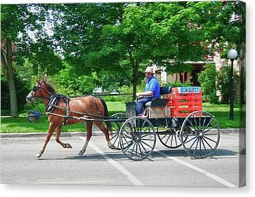 Amish Merchant 5671 Canvas Print by Guy Whiteley