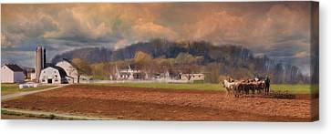 Plow Horse Canvas Print - Amish Plow by Lori Deiter