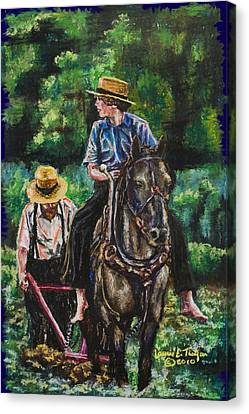 Amish Plowing Canvas Print by Laurie Tietjen