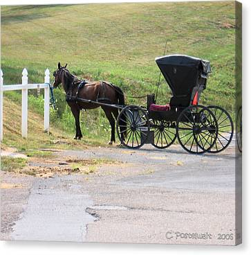 Amish Transportation Canvas Print