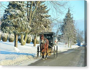 Amish Winter Canvas Print by David Arment
