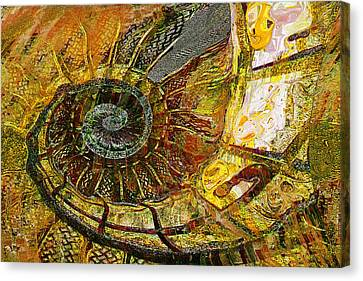 Ammonite Canvas Print by Anne Weirich