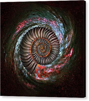 Ammonite Galaxy Canvas Print by Jerry LoFaro