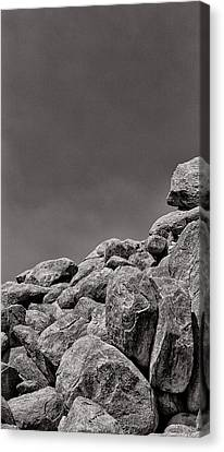 Among The Crags Canvas Print