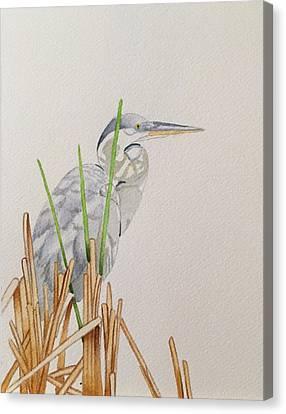 Among The Sawgrass Canvas Print by Jason Silverman