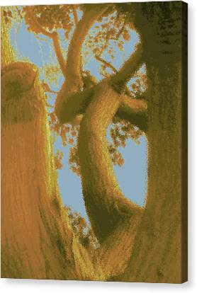 Among The Trees Canvas Print