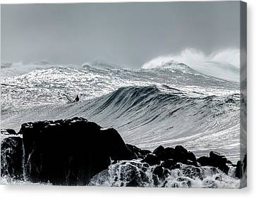 Amongst The Elements Canvas Print by Sean Davey
