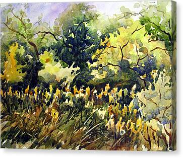Amongst The Goldenrods Canvas Print by Chito Gonzaga