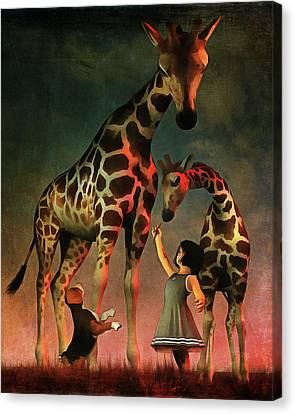 Amy And Buddy With The Giraffes Canvas Print