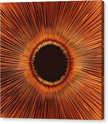 An Abstract Hole Canvas Print by Sven Hagolani