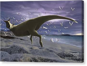 Flying Seagull Canvas Print - An Albino Carnotaurus Surprising by Michele Dessi