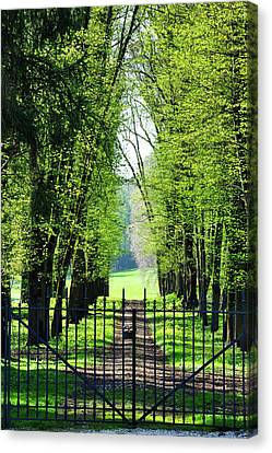 An Alley In Spring Canvas Print