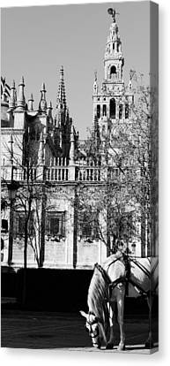 An Ancient View - Seville Giralda Canvas Print
