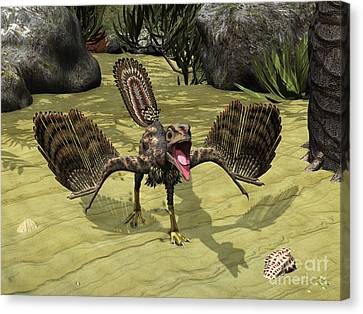 An Archaeopteryx Depicted Canvas Print