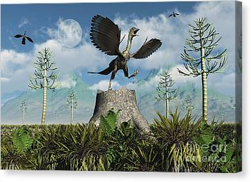 An Archaeopteryx Takes Flight From Atop Canvas Print by Mark Stevenson