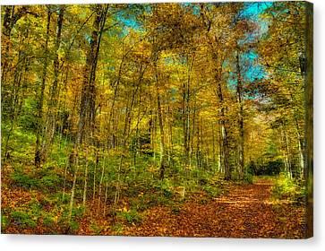 An Autumn Walk Canvas Print