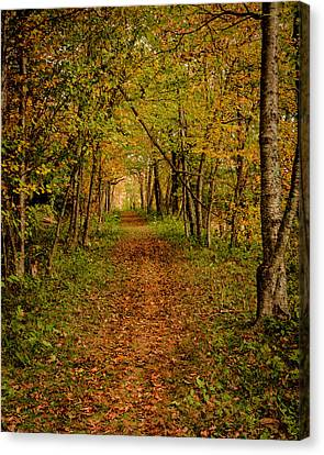 An Autumn's Walk Canvas Print
