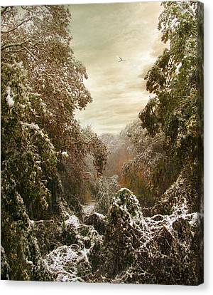 An Early Snow Canvas Print by Jessica Jenney