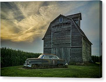 An Old Cadillac By A Barn And Cornfield Canvas Print