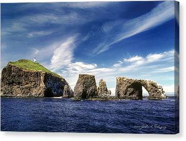 Channel Islands National Park - Anacapa Island Canvas Print by John A Rodriguez