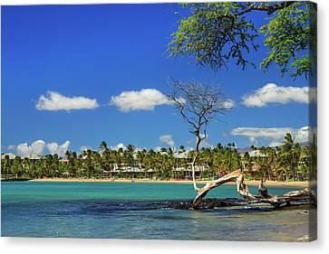 Anaehoomalu Bay Canvas Print by James Eddy
