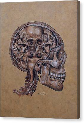 Anatomy Of A Schizophrenic Canvas Print by Joe Dragt