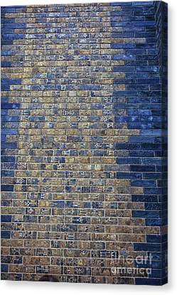 Ancient Babylonian Inscriptions Canvas Print by Patricia Hofmeester
