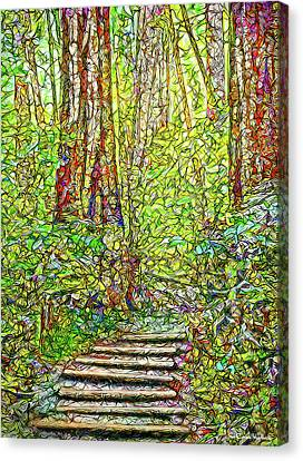 Canvas Print featuring the digital art Ancient Forest Path - Tamalpais California by Joel Bruce Wallach