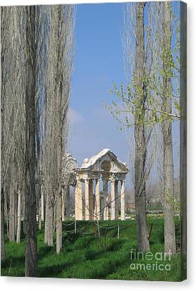 Aphrodisias Canvas Print - Ancient Gate Through The Trees by Clay Cofer