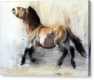 Ancient Horse Przewalski In Winter Canvas Print by Mark Adlington