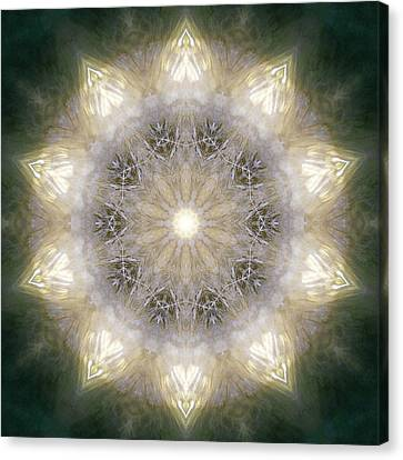 Ancient Light X Canvas Print by Lisa Lipsett