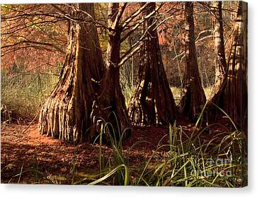 Canvas Print featuring the photograph Ancient Tree At Lake Murray by Tamyra Ayles