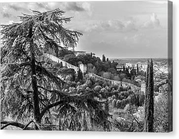 Ancient Walls Of Florence-bandw Canvas Print