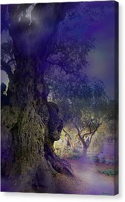 Canvas Print featuring the photograph Ancient Witness Tree Garden Of Gethsemane Vision by Anastasia Savage Ealy