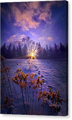 Canvas Print featuring the photograph And Back Again by Phil Koch