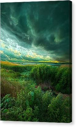 And For A Moment It Was Silent Canvas Print by Phil Koch