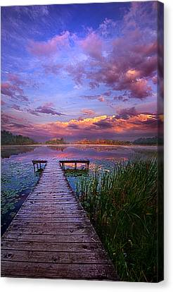 And Silence Canvas Print by Phil Koch