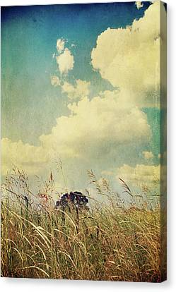 And The Livin's Easy Canvas Print by Laurie Search