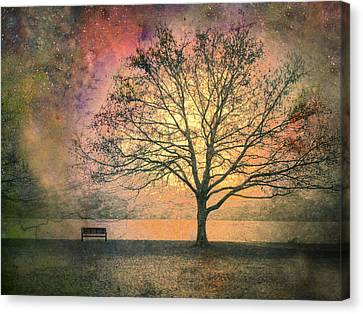 Trees Canvas Print - And The Morning Is Perfect In All Her Measured Wrinkles by Tara Turner