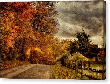 And The Seasons They Go Round And Round Canvas Print by Lois Bryan