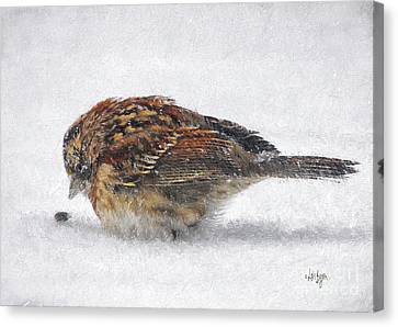 Sparrow Canvas Print - And These Thy Gifts  by Lois Bryan