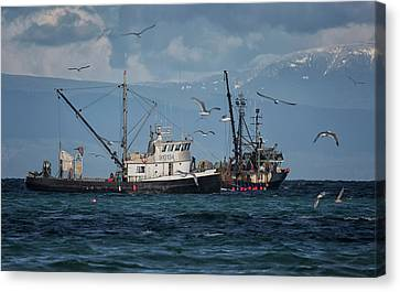 Canvas Print featuring the photograph Kornat And Western Investor by Randy Hall