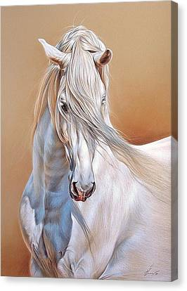 Andalusian Canvas Print by Elena Kolotusha