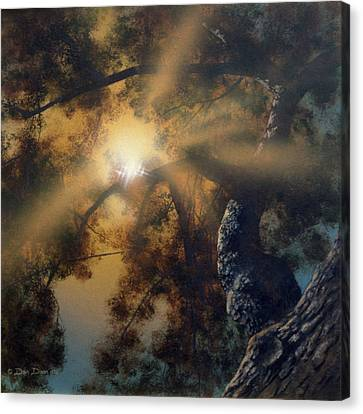 Andi's Oak Canvas Print by Don Dixon