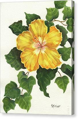 Andys Hibiscus Canvas Print